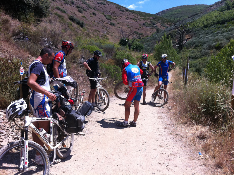 ciclistas y conductores, convivencia obligatoria