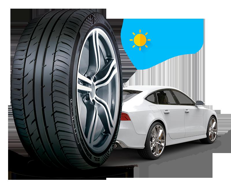 Cartyzen, foto neumáticos altas prestaciones