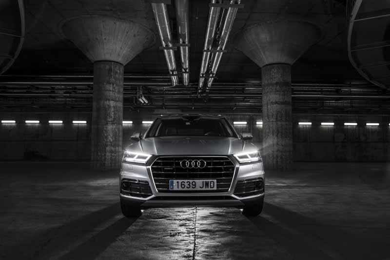Foto Exteriores(23) Audi Q5 Suv Todocamino 2017