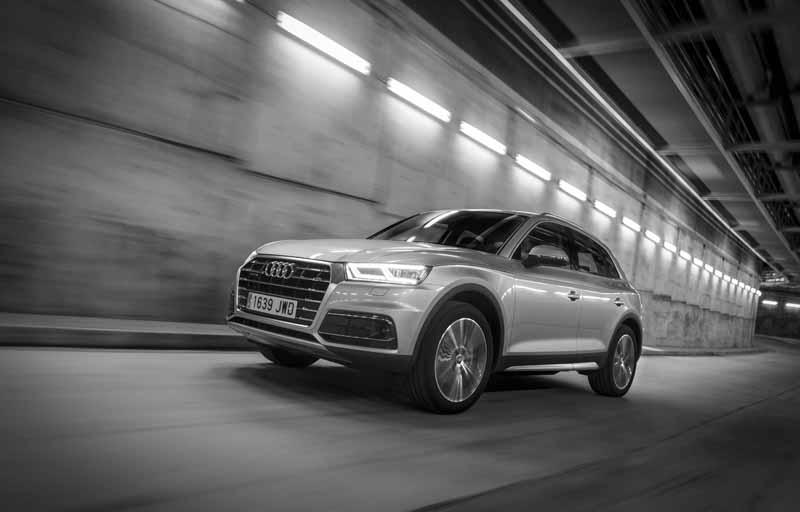 Foto Exteriores(31) Audi Q5 Suv Todocamino 2017
