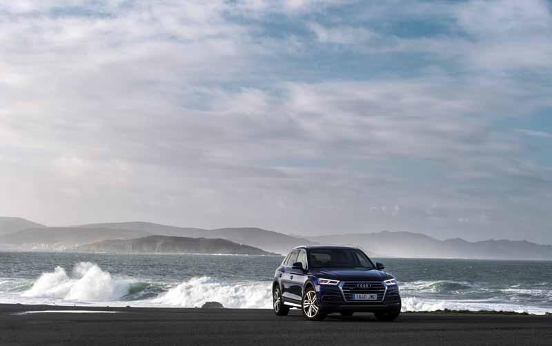 Foto Exteriores(34) Audi Q5 Suv Todocamino 2017