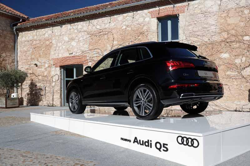 Foto Exteriores(4) Audi Q5 Suv Todocamino 2017