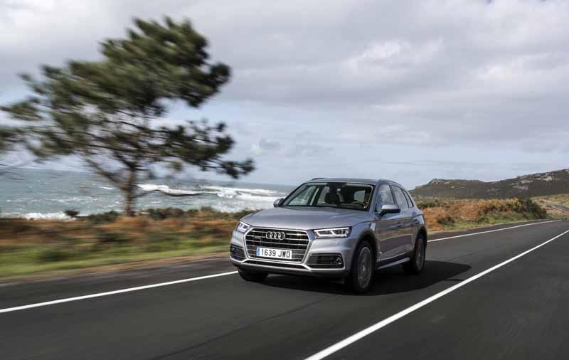 Foto Exteriores(46) Audi Q5 Suv Todocamino 2017