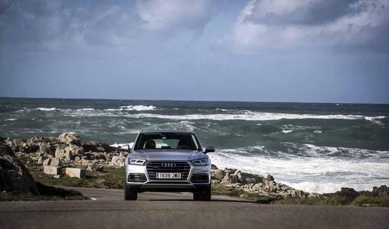 Foto Exteriores(56) Audi Q5 Suv Todocamino 2017