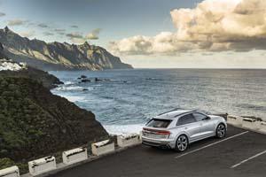 Foto Exteriores (83) Audi Rs-q8 Suv Todocamino 2019