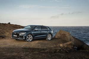 Foto Exteriores (92) Audi Rs-q8 Suv Todocamino 2019