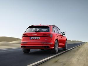 Foto Exteriores 2 Audi Sq5 Suv Todocamino 2017
