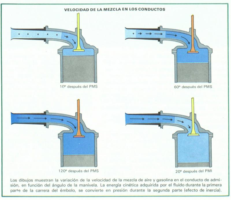Foto Conducto De Diccionario Alimentacion