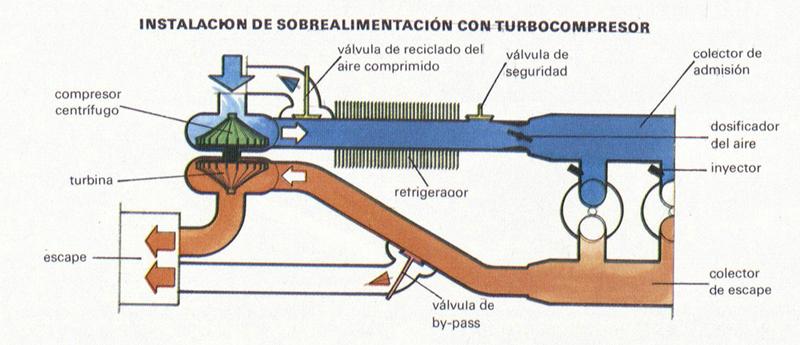 Foto Sobrealimentacion Diccionario Alimentacion