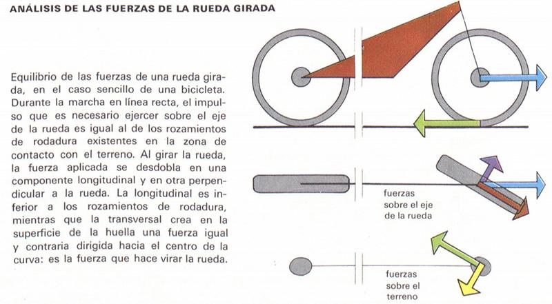 Diccionario Motor