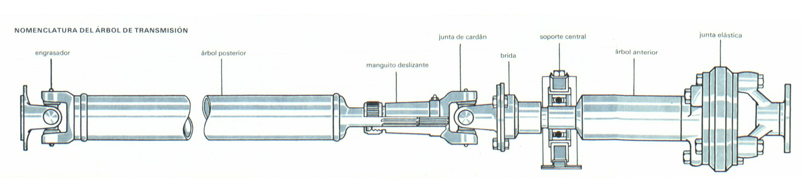 Foto arbol de transmision diccionario transmision for Arbol de fotos manual
