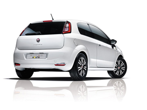 fiat punto-young 2014
