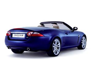 Foto Trasero Jaguar Xk Descapotable 2009