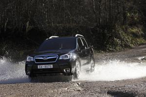 Foto Exteriores (12) Subaru Forester Suv Todocamino 2013