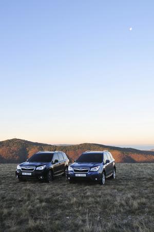 Foto Exteriores (79) Subaru Forester Suv Todocamino 2013
