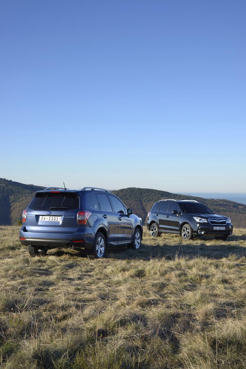 Foto Exteriores (77) Subaru Forester Suv Todocamino 2013