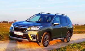 Foto Exteriores (12) Subaru Forester Suv Todocamino 2020