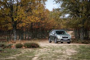 Foto Exteriores (35) Subaru Forester Suv Todocamino 2020