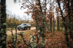 Foto Exteriores (41) Subaru Forester Suv Todocamino 2020