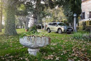 Foto Exteriores (52) Subaru Forester Suv Todocamino 2020