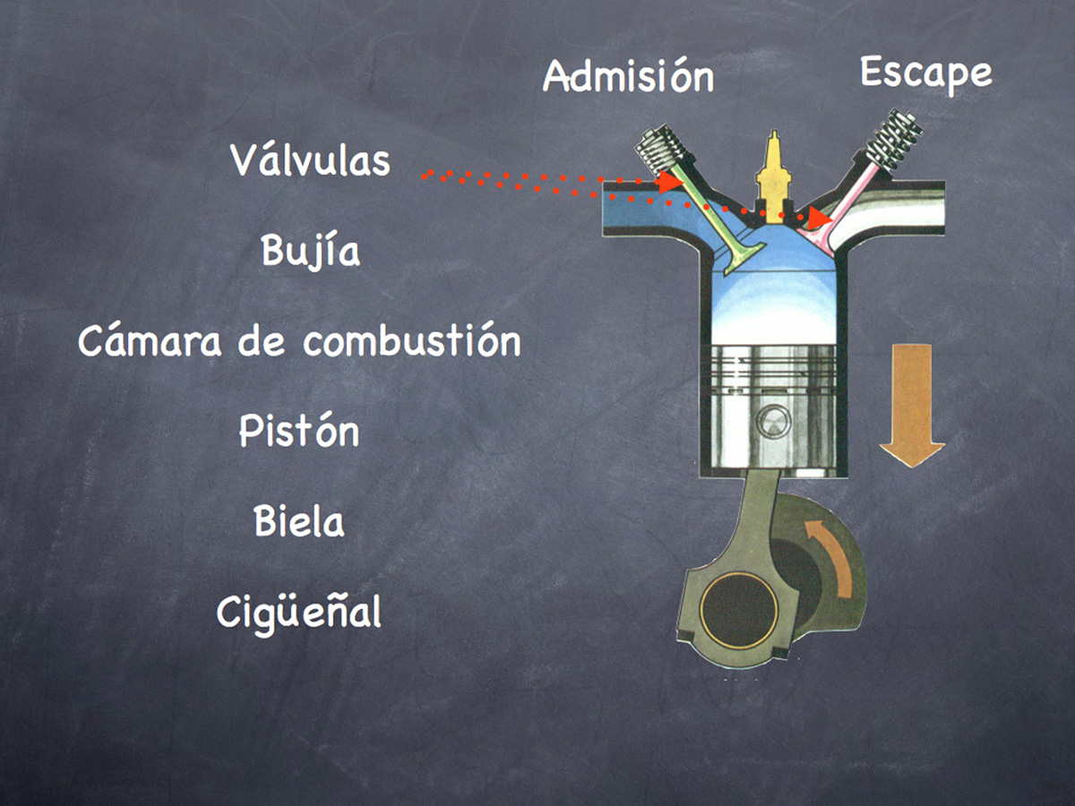 Elementos dentro del cilindro