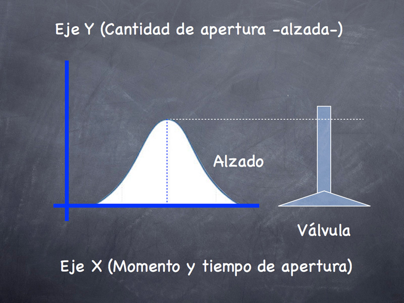 Foto Distribucion Tecnica Distribucion Variable