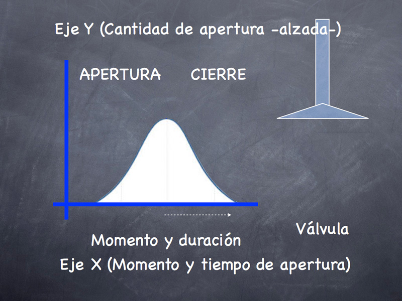 gráfica de distribución variable