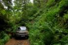 Galería land-rover discovery4 2010