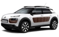 Ver videos citroen C4 Cactus