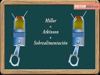 Galerias diccionario ciclo-atkinson-ciclo-miller