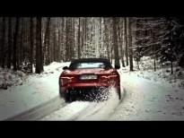 Jaguar - Vivo en la nive