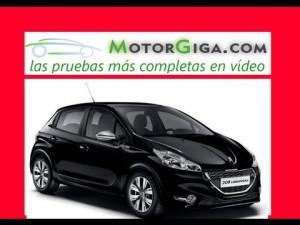 Video Peugeot 208 2013 - Analisis Prueba Dinamica