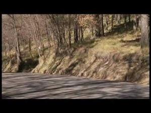 Video - Ford Focus 2008 en movimiento -imágenes oficiales-