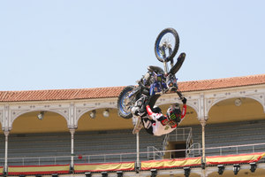 Foto Red Bull X Fighter 203