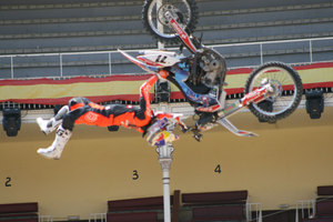 Foto Red Bull X Fighter 239