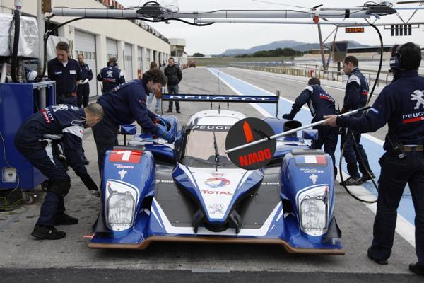 Peugeot_ALMS.jpg