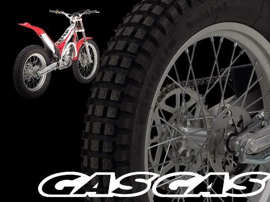 Gas_Gas_Cat__logo_2009.jpg