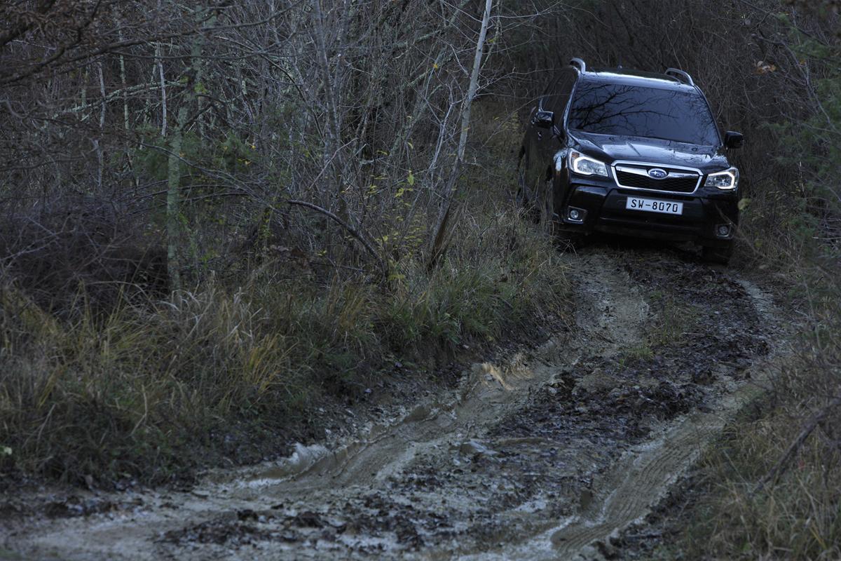 Subaru Forester, prueba off-road